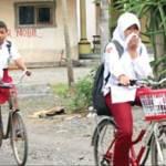 16 Kecamatan Diguyur Abu Raung