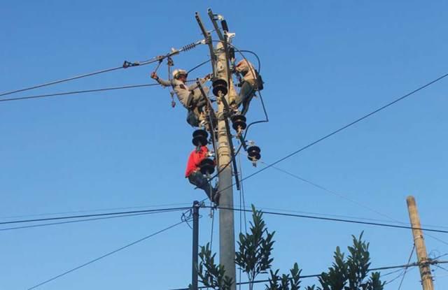 Petugas-memasang-kabel-di-tiang-baru-yang-berukuran-lebih-besar-di-Desa-Kecamatan-Gambiran,-Banyuwangi,-kemarin