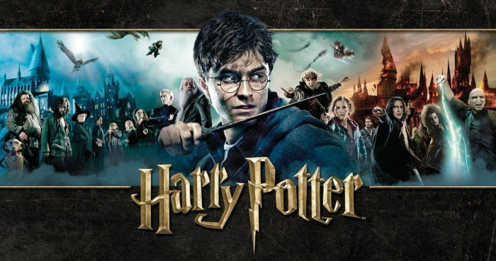 Harry Potter Wizards Unit