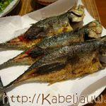 Makreel bakken: Klassiek of op Oosterse wijze