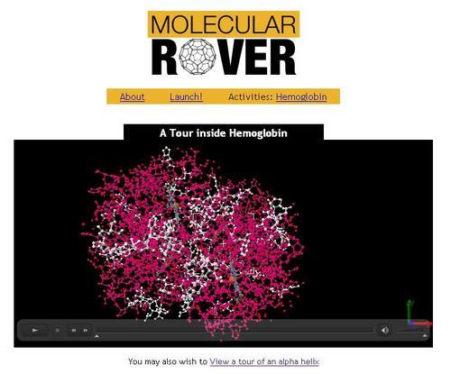 Molecular Rover