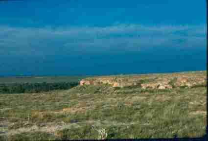 Cimarron National Grasslands (CNG) Field Trip Agenda