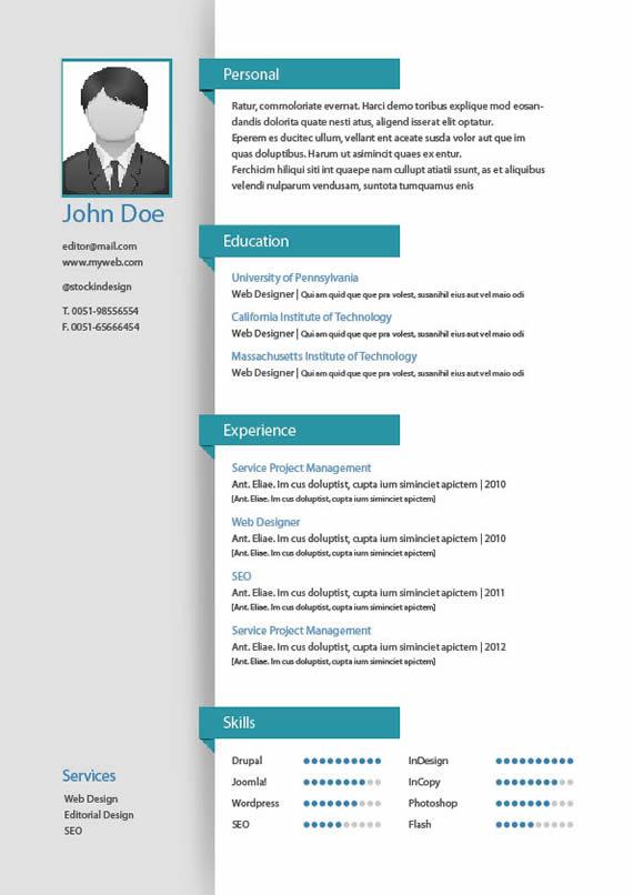 vista previa de una de las páginas incluídas para curriculum vitae