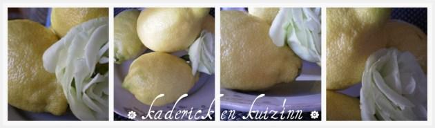 Sorbet citron avec des zestes de citron bio sur ©Kaderick en Kuizinn