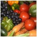 Présentation de la ferme les fleurettes ou j'achète mes légumes et fruits bio ou d'agriculture raisonnée