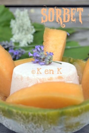 recette melon-sorbet-desserts-fruits