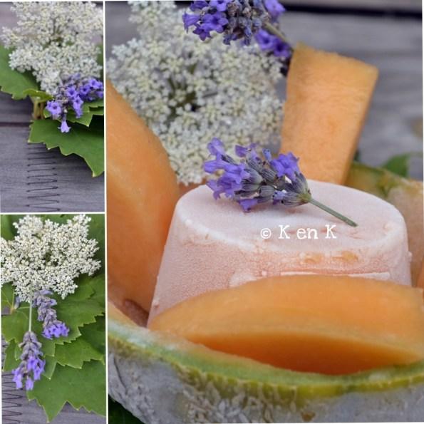 présentation du sorbet melon