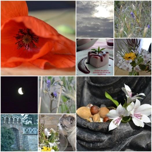 Juin Projet 365 - Récap du mois de Juin chez Kaderick en Kuizinn©