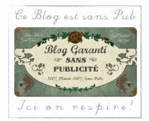 publicité-recette-blog-avatar