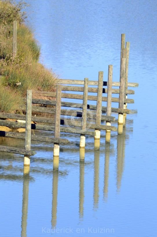 eau-lac-bois-reflets
