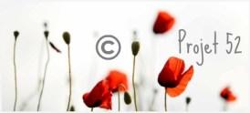 logo-photos-projet-blog