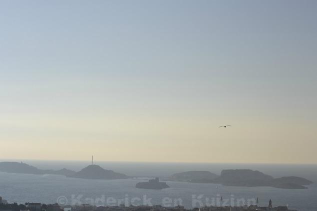 Photo des Îles du Frioul avec les mouettes pour le thème lumière du projet 52 de vivre la photo