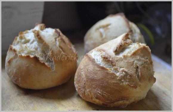 Recette des pains mini hamburgers faits avec une pâte à pain maison et sans pétrissage