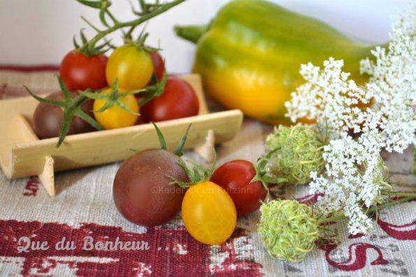 Tomates cerises bio jaunes, rouges et grenats avec du poivron et des fleurs de carotte