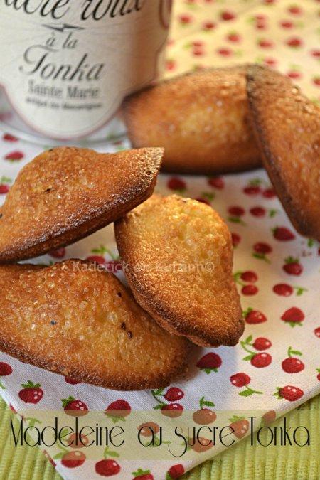 Dégustation de la recette des madeleines au sucre tonka de Terre exotique® avec ce bon gout d'amande légèrement amère - Kaderick en Kuizinn©