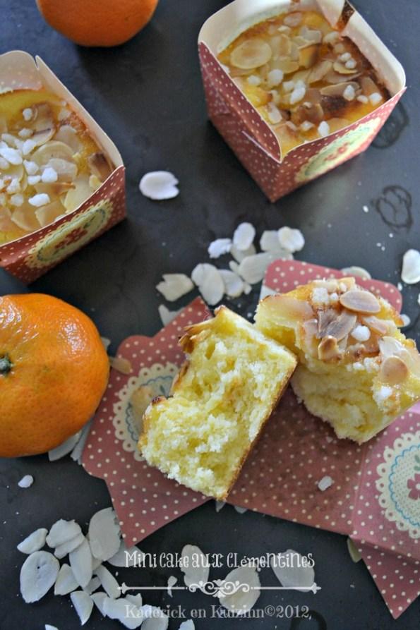 Recette des mini cakes lait iben aux clémentines bio - Kaderick en Kuizinn©2012