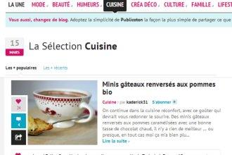 Selection Cuisine Hellocoton gateau renverse pommes