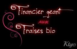 logo financier aux fraises bio
