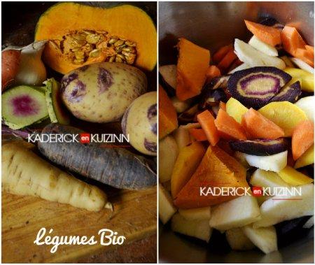 Ingrédients bio recette soupe potimarron chesnut bush, carotte ancienne et radis green meat - légumes bio
