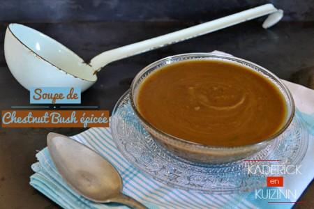 Recette bio de la recette soupe potimarron chestnut bush épicée - légumes bio