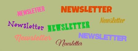 logo nouvelle newsletter