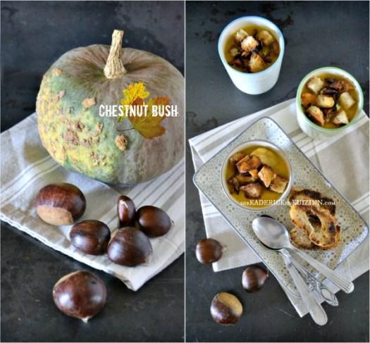 Veloute potimarron - Recette chestnut bush girolles, cèpes et marrons