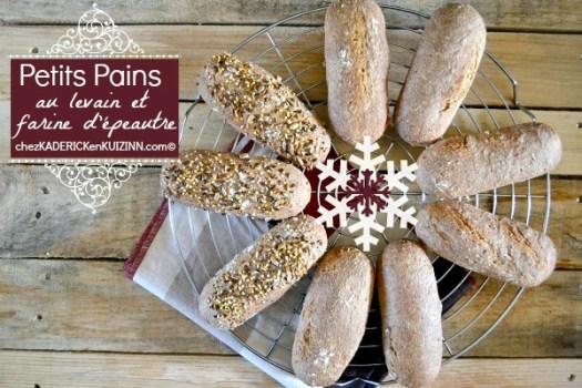 Pain epeautre - Petit pain de Noël levain et épeautre|Kaderick