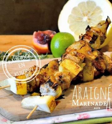 Recette Araignee porc - Plancha brochette araignée agrumes |Kaderick