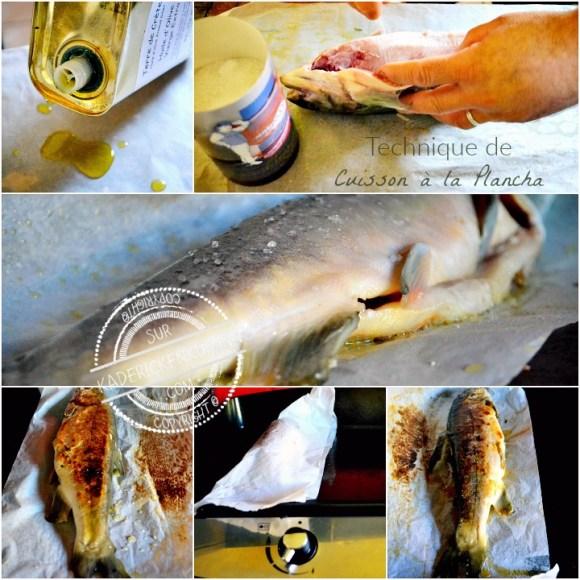 Technique cuisson plancha de l'omble chevalier en semi papillote