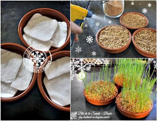 calendrier jour 4 comment faire son blé de la sainte barbe