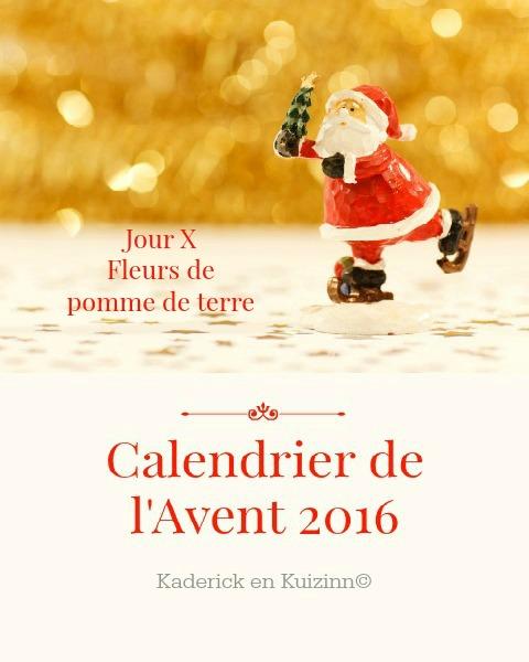 image-a-la-une-calendrier-jour-10-calendrier-de-lavent-2016-top-fleurs-legumes-kaderick-en-kuizinn