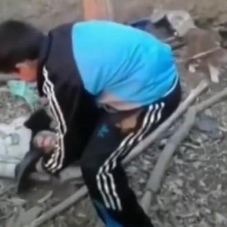 Yavru Köpek Katliamını Suriyeliler Mi Yaptı?