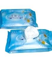Islak Tuvalet Kağıdı Kullanımı