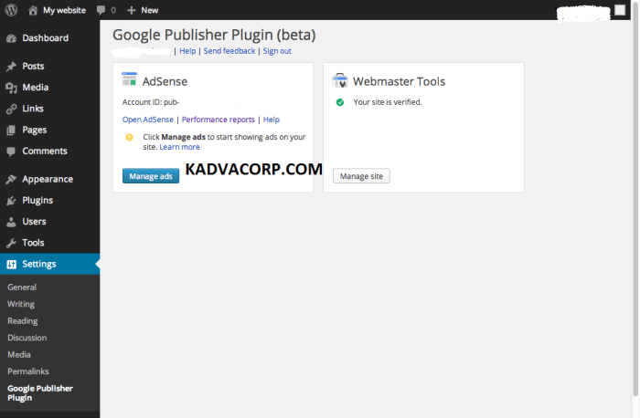 Google Adsense Plugin For WordPress, plugin wordpress, google adsense wordpress plugin,