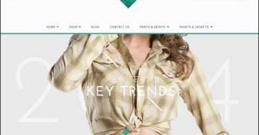 eCommerce WordPress Themes,