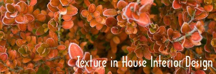 Texture, House Interior, Design element,