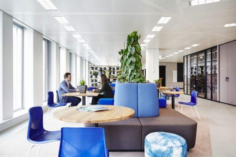 greenery in side office interior design area