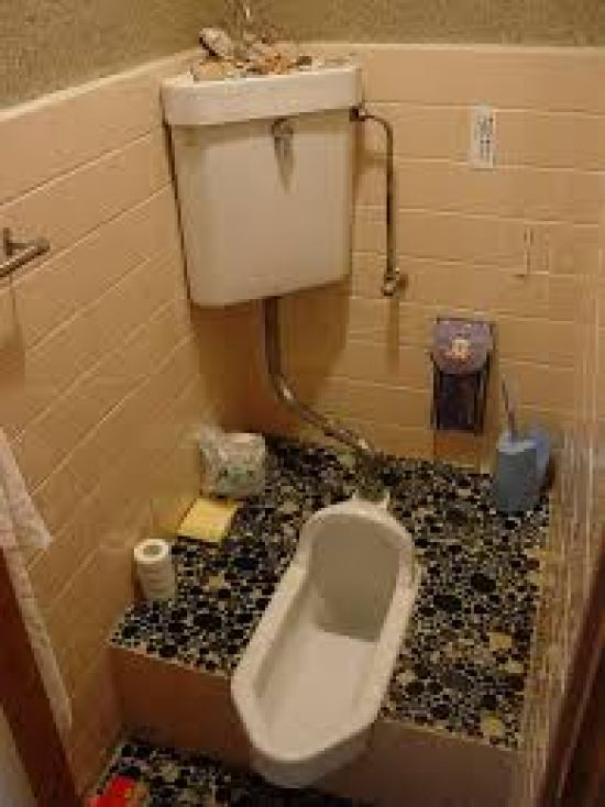 costome water closet design in the world