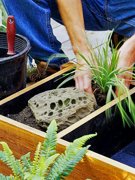 Fourth step in make Small Water Garden for Balcony or Patio process