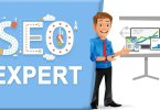 SEO expert, web traffic,