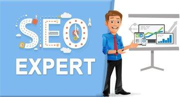 SEO expert, web traffic,