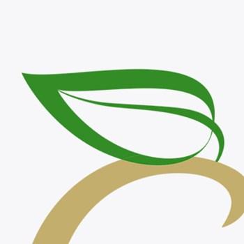 orcava ag corporate Logodesign