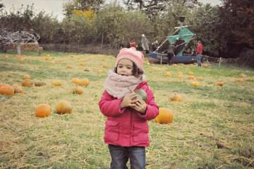 LadyrathPumpkinPatch