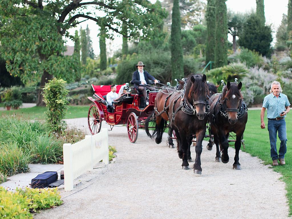 Hochzeitskutsche Gunstig Mieten Mietmeile De