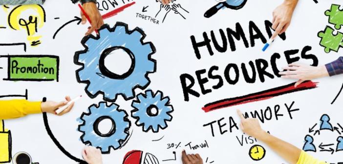 A'dan Z'ye İnsan Kaynakları Yönetimi Bölümünün Detaylı Analizi