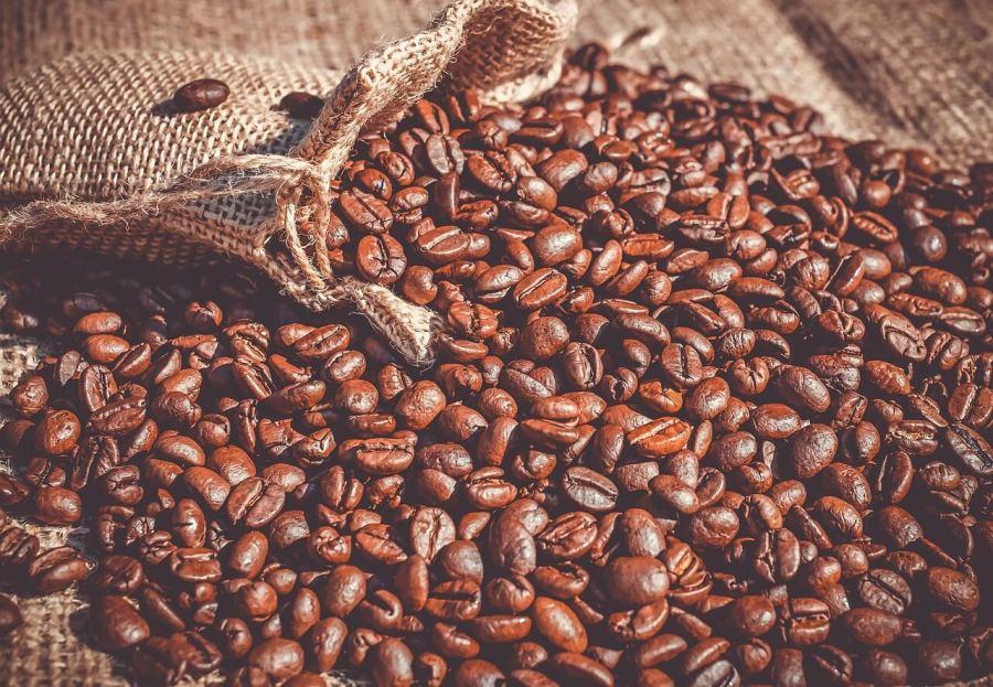 kaffeebohnen aus costa rica