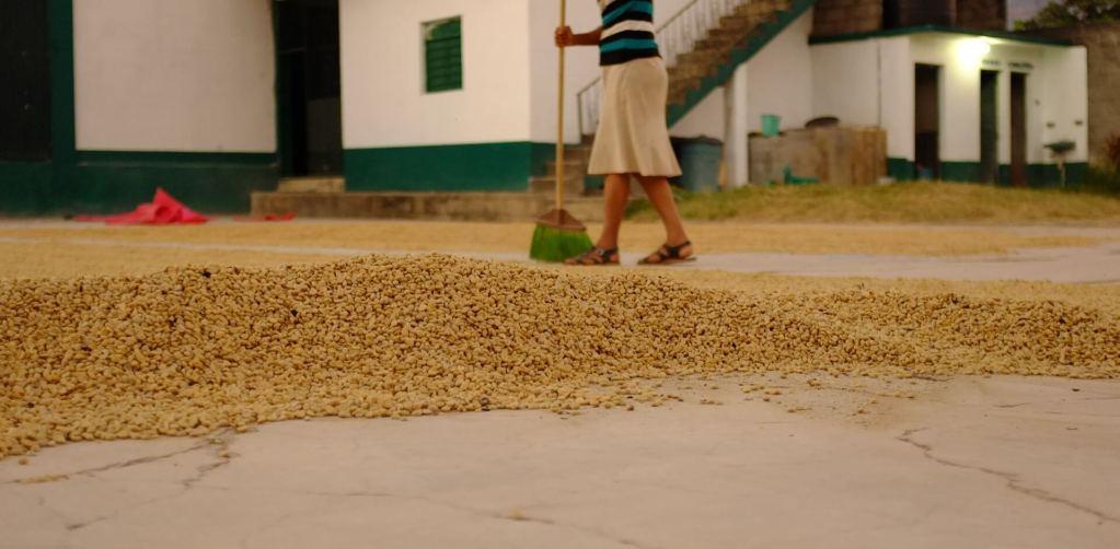 kaffeeaufbereitung header
