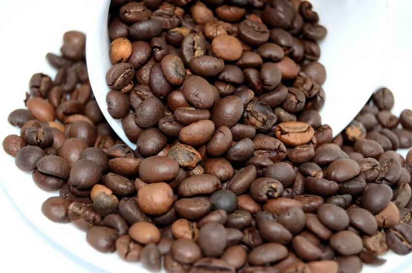kaffeepad bohnen