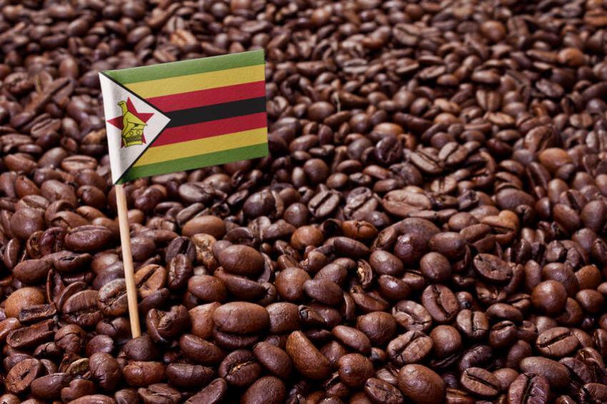 kaffee simbabwe test