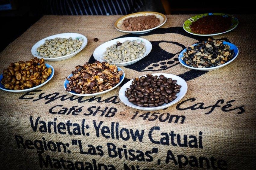 varietäten nicaragua kaffee